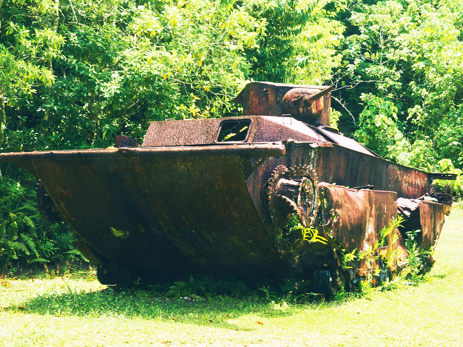 ペリリュー島の観光ガイド|日本とも歴史深い名所の見どころや人気ツアー