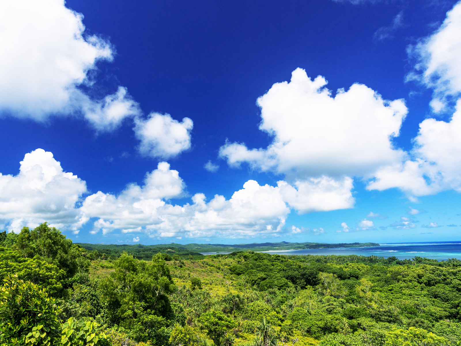 バベルダオブ島の観光ガイド|パラオ玄関口の名所・ホテル・レストラン情報