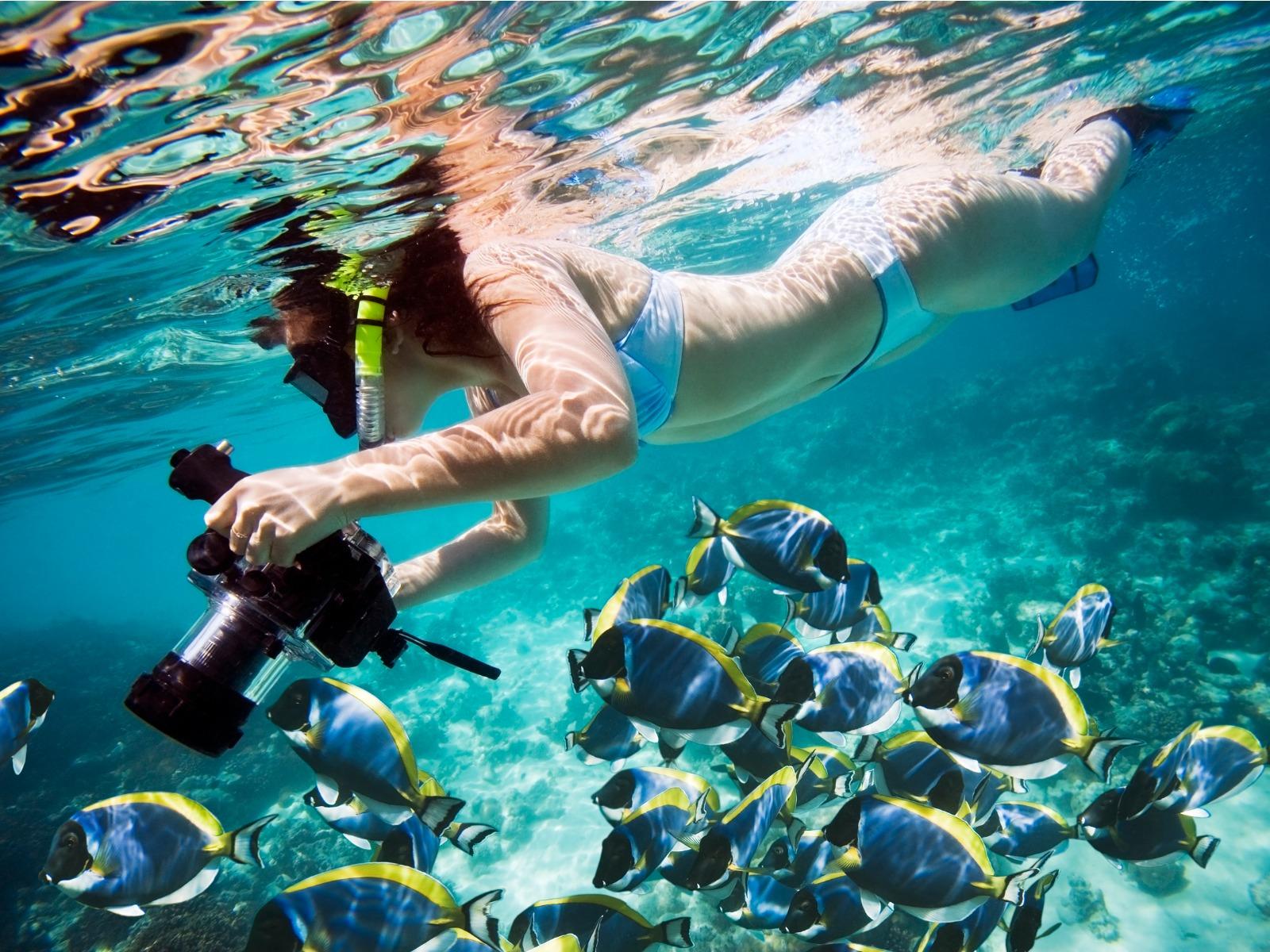 シュノーケリングに最適な防水カメラ7選!選び方のポイントも解説